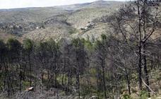 Así quedó la localidad de Cortes tras el incendio