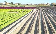 La SAREB recurre ante el TSJCV el Plan de la Huerta de Valencia