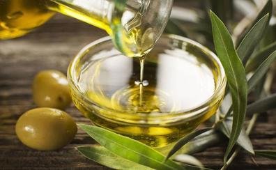 Ruta por los olivos valencianos: conoce cómo se elabora el aceite en la Comunitat