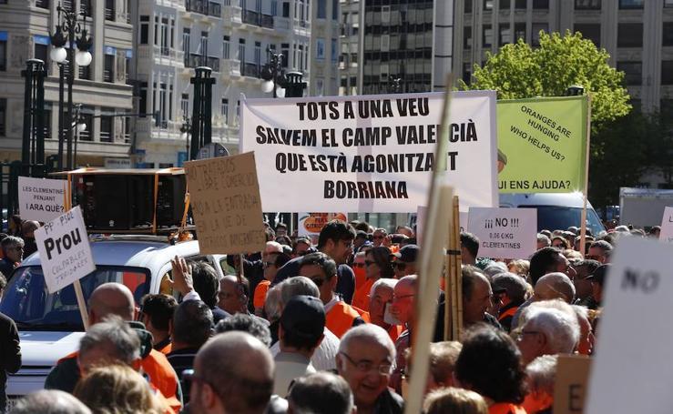 Manifestación de citricultores en Valencia
