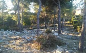 Gandia crea nuevas fajas forestales para impedir incendios como el de Marxuquera
