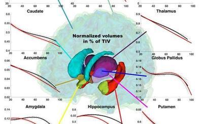 El descubrimiento valenciano que permite detectar el alzhéimer a los 37 años