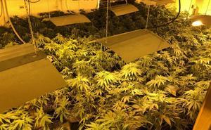El triángulo de la marihuana de España está en Valencia