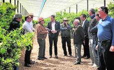 La Diputación de Alicante refuerza el apoyo a los agricultores