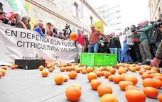 El concurso de acreedores de Fruterca deja a 300 agricultores sin cobrar sus cosechas