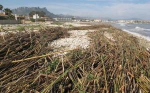 La Marina se afana en borrar los restos del temporal para salvar el próximo puente de mayo