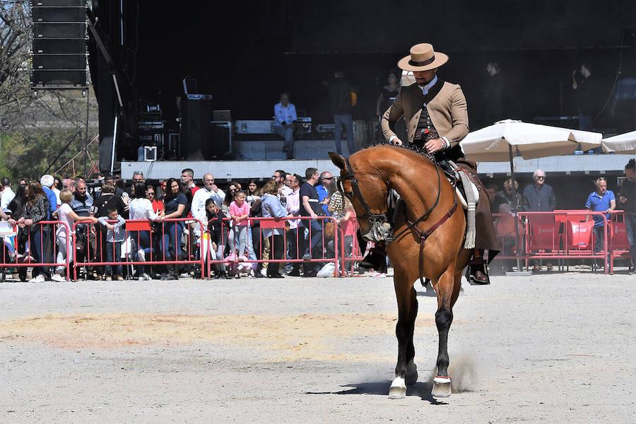 Exhibición ecuestre en la Fran Feria Andaluza de Valencia 2019