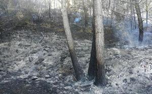 Los bomberos consiguen controlar el incendio que amenazaba una zona boscosa en Xàbia