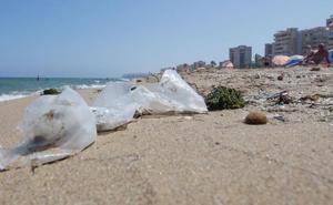 Investigadores de la UA explican por qué el plástico daña la salud