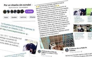 La recogida de mascotas abandonadas en La Pobla de Vallbona genera recelos entre los animalistas
