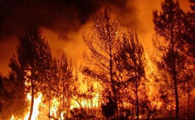 Los incendios de Cortes de Pallás y Andilla, entre los diez más desvastadores del siglo XXI