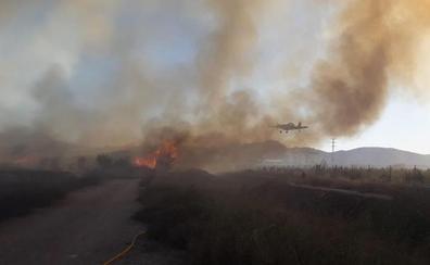 Sofocado el incendio que ha afectado a una zona de cañar de Oliva