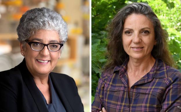 Premio Princesa de Asturias para las investigadoras que utilizan las plantas contra el cambio climático