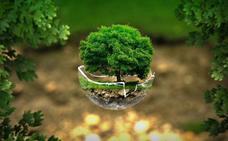 Talleres, charlas y excursiones para celebrar el Día Mundial del Medio Ambiente