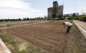 Malilla estrena huertos urbanos 18 meses después de la apertura del jardín