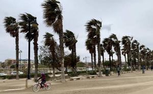 El tiempo para el jueves en España: riesgo por lluvias y tormentas en cuatro provincias