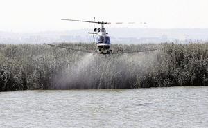 Sanidad restringe las fumigaciones aéreas para combatir el mosquito tigre