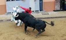 Agenda de bous al carrer del 21 al 23 de junio en Valencia, Alicante y Castelllón