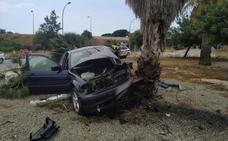 Un conductor sin permiso ni seguro se salta un control policial y acaba chocando contra una palmera en Valencia