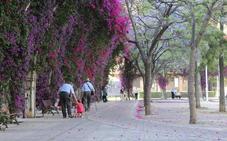 Un joven de 19 años abusa de una mujer de 30 en un parque de Valencia