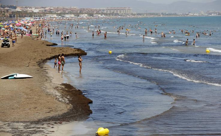 Cierran de nuevo al baño las playas de la Patacona y Port Saplaya Norte