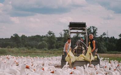 'Light as feathers' de Rosanne Pel gana el premio a la mejor película en Cinema Jove