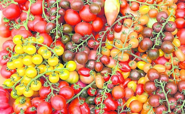 El consumidor, motor de la innovación agroalimentaria