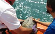 Cruz Roja inicia una campaña por las playas seguras y sostenibles