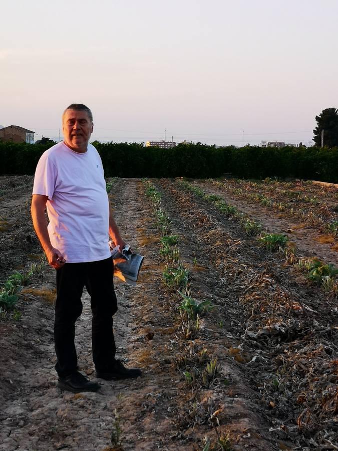 Ricard Camarena recupera la tradicional quema de la alcachofa