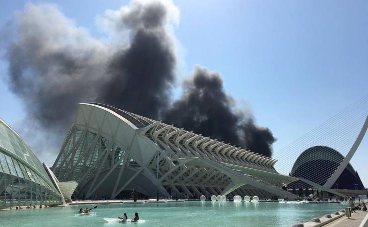 Incendio en el Oceanogràfic de Valencia