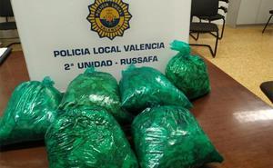 Llama a la Policía por una fuga de agua y le incautan cien plantas de marihuana en Valencia