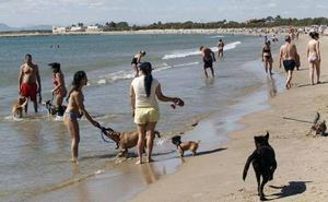 La playa de Pinedo delimita la zona de baño para los perros