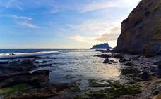 Benissa cierra la playa canina de La Llobella por graves problemas de insalubridad