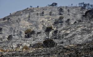 Extinguido el incendio de Beneixama, tras quemar 900 hectáreas