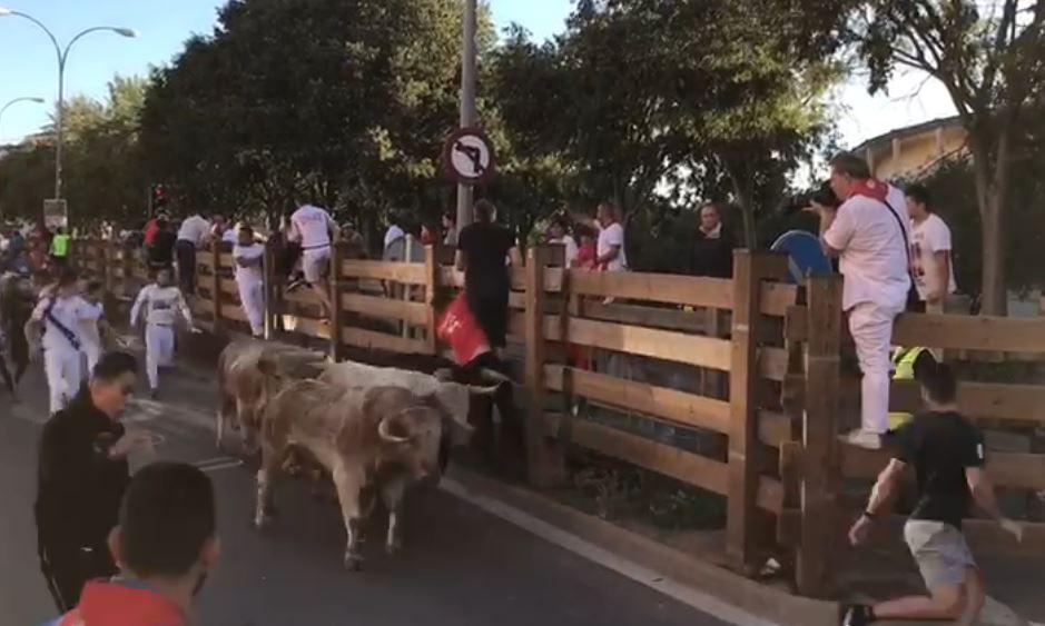 Un vecino de Castellón, herido por un toro en el encierro de las fiestas de Tudela