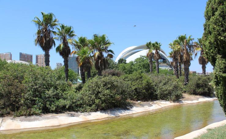 Ocio urbano en el entorno de la Ciudad de las Artes y de las Ciencias