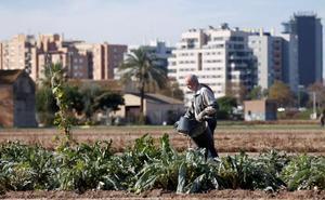 ¿Qué es el efecto 'isla de calor' que se da en Valencia?
