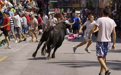 Un hombre resulta herido por asta de toro en una pedanía de Cortes de Arenoso