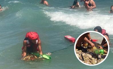 La Cruz Roja rescata en Xàbia una tortuga boba con basura enganchada a su aleta