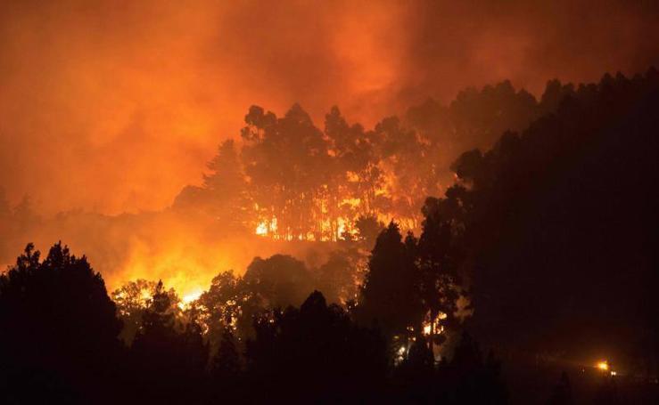 Fotos del incendio en Gran Canaria en agosto de 2019
