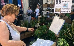 Los vendedores dominicales recogen firmas para seguir junto al Mercado Central