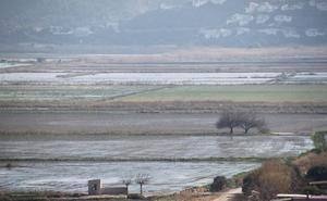 La contaminación por nitratos amenaza ya tres parques naturales de la Comunitat