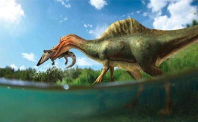 Vallibona ya tiene dinosaurio