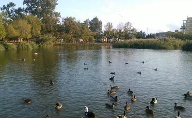 L' Estany de Nules, relax en la naturaleza