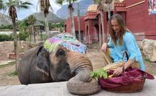 La elefanta Petita cumple 47 años en Terra Natura