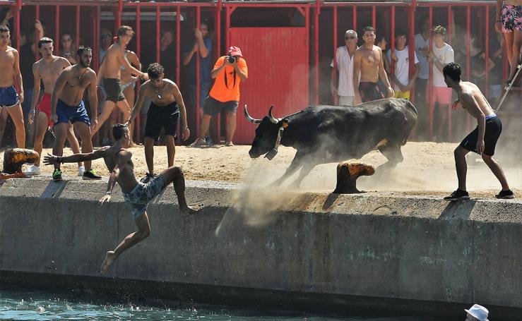 Los bous a la mar, más espectaculares que nunca en Xàbia