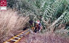 Los bomberos rescatan a tres jóvenes atrapados en un barranco de ocho metros de profundidad en Segorbe
