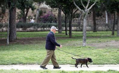 Zamora cobrará un impuesto de 9 euros por cada perro censado