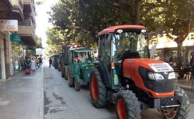 Los viticultores toman las calles de Requena ante los bajos precios de la uva