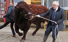 Desconcierto en torno a la dirección de Boris Johnson